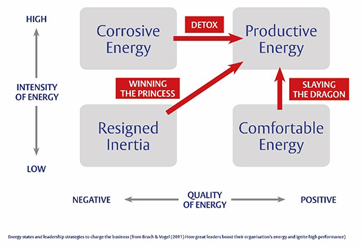 Henley Business School - Organisational energy model