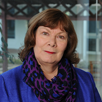 Dr Jean-Anne Stewart - Henley Business School